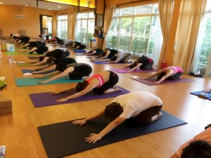 yoga connect